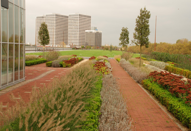 DakPark Rotterdam Lisa Cox Garden Designs