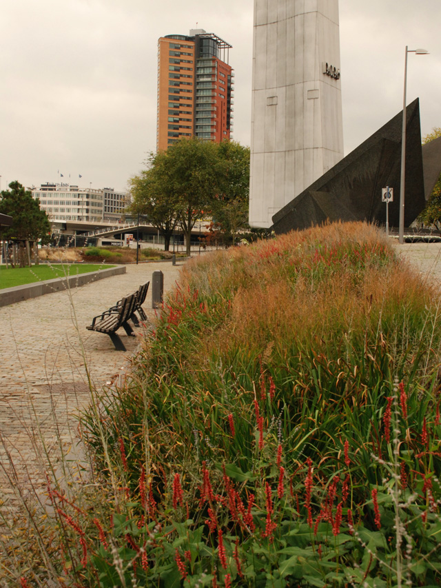 Euromast Park Oudolf planting Lisa Cox Garden Designs