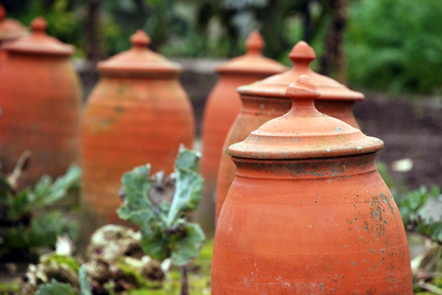 Terracotta cloches at Hotel Villa Augustus Lisa Cox Garden Designs