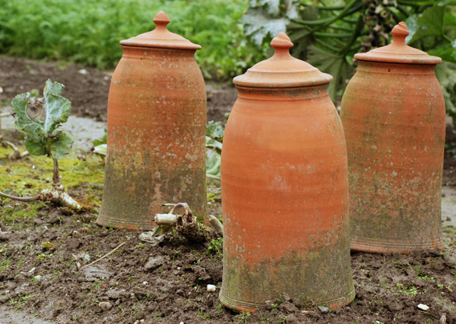 Terracotta forcing cloches at Hotel Villa Augustus Lisa Cox Garden Designs