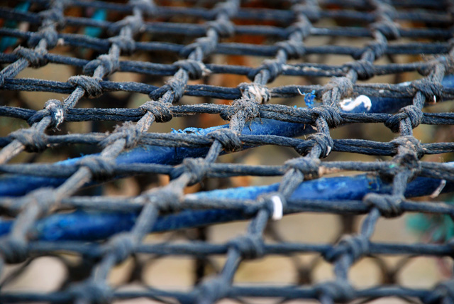 Crab nets at Lyme Regis Lisa Cox Garden Designs
