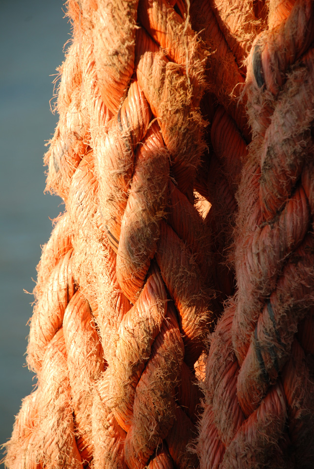 Fishing boat rope Lyme Regis Lisa Cox Garden Designs