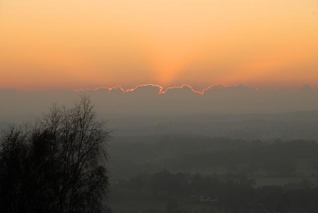 Golden sunrise over from Box Hill Lisa Cox Garden Designs