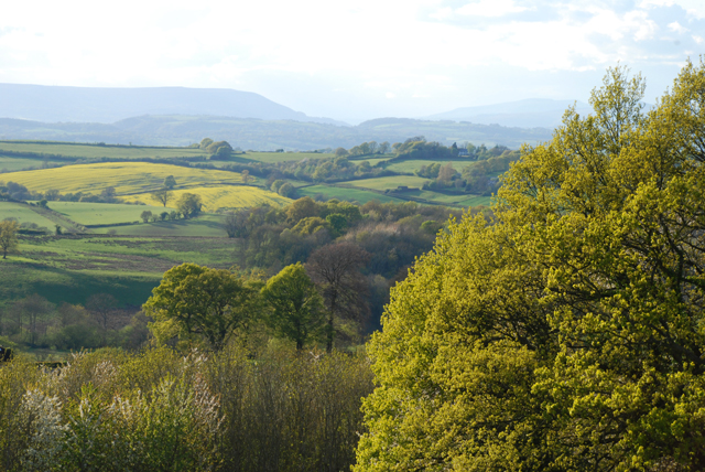 View of the Welsh Hills in Spring Lisa Cox Garden Designs