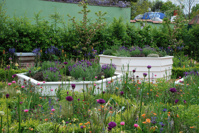 Bees Knees Garden at RHS Malvern 2015 Lisa Cox