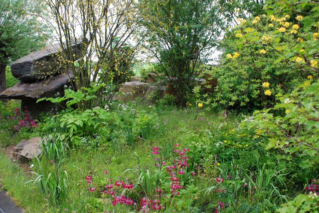 Laurent perrier garden Dan Pearson RHS Chelsea 2015 Lisa Cox