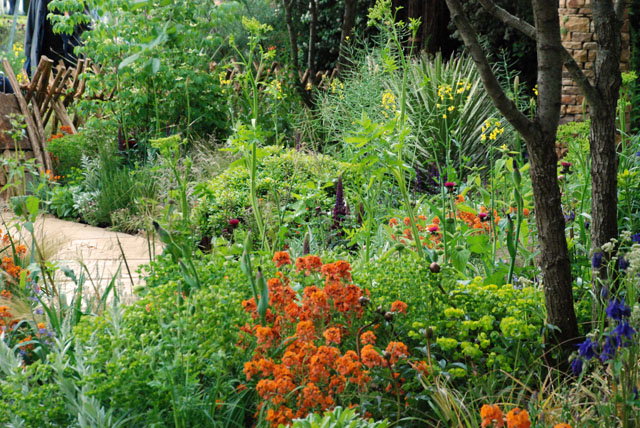 Planting in Sentebale garden RHS Chelsea 2015 Lisa Cox