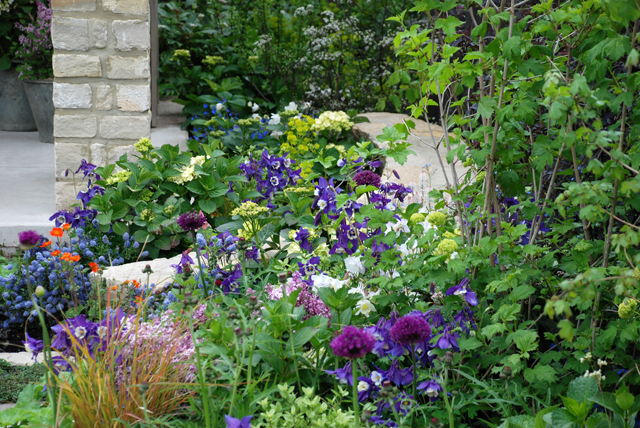 Planting in The Cotswold Garden RHS Malvern 2015 Lisa Cox Designs