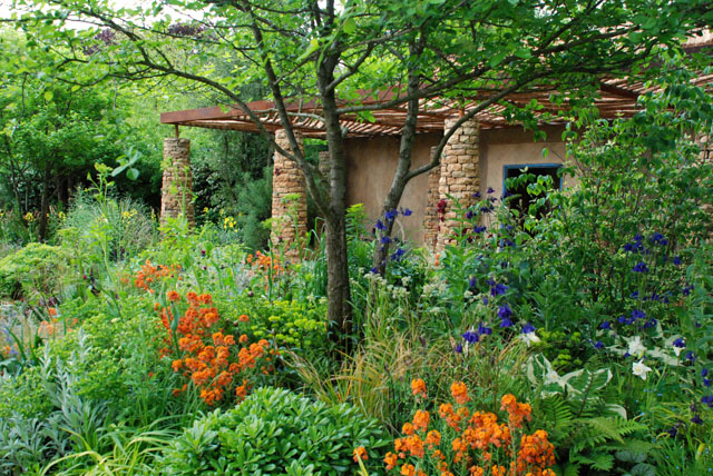 Sentebale garden RHS Chelsea 2015 Lisa cox