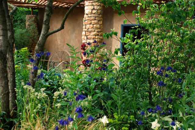 Sentebale garden at RHS Chelsea 2015 Lisa Cox