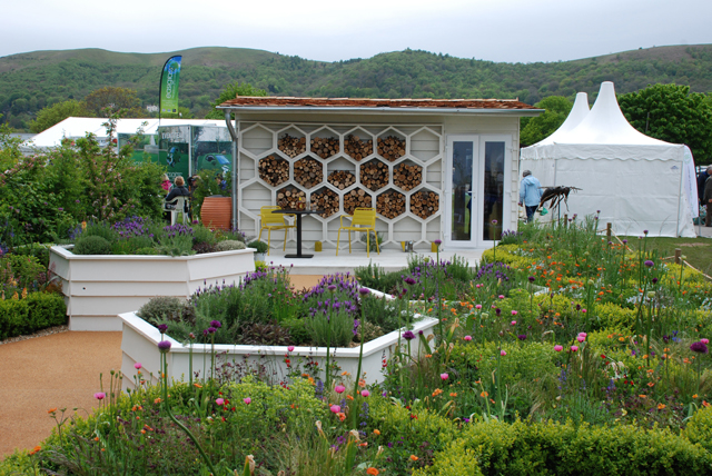 The Bees Knees garden at RHS Malvern 2015 Lisa Cox
