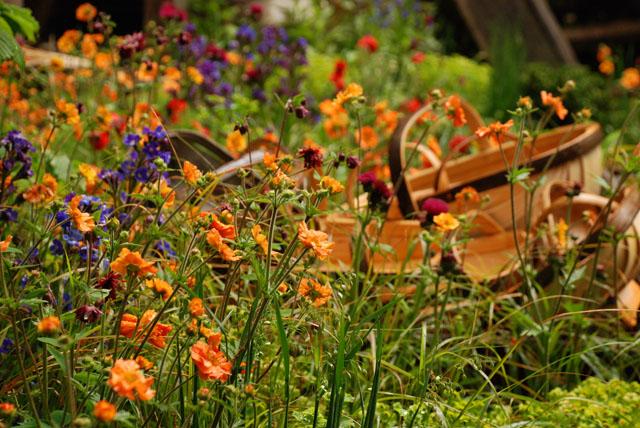 planting in Trug maker's garden RHS Chelsea 2015 Lisa Cox