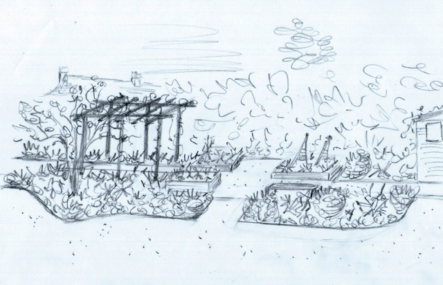 Concept sketch of vegetable garden Lisa Cox Designs