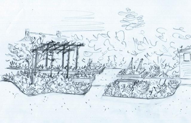 Concept sketch of vegetable garden Lisa Cox Designs