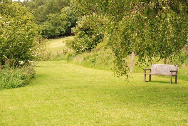 wild summer garden Lisa Cox Garden Designs