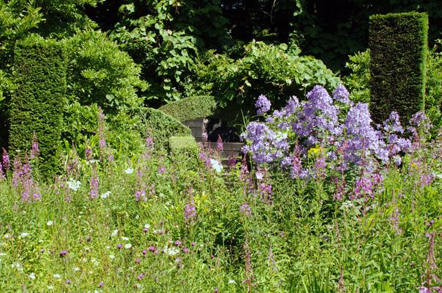 Wild Garden at Veddw Monmouthshire Lisa Cox Designs