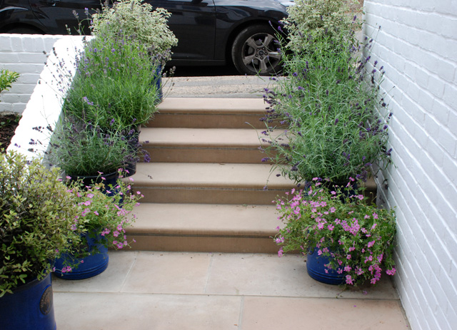 New front steps Reigate Lisa Cox Garden Designs