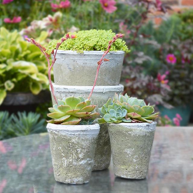 White stone pots by Mia Fleur