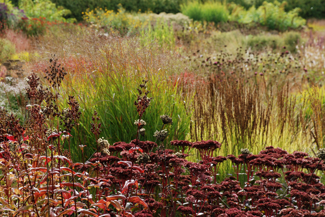 Perennial planting at Hauser Wirth Lisa Cox Designs
