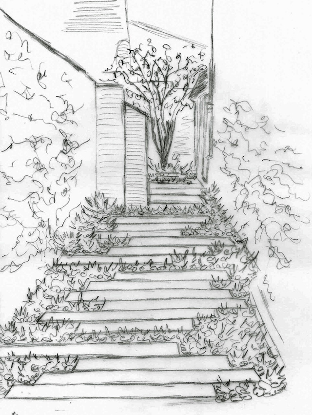 Concept sketch for Monmouth town house garden