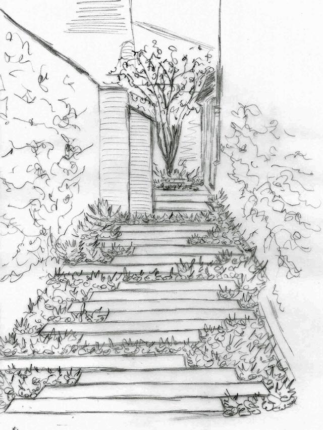 Concept sketch for Monmouth town house garden