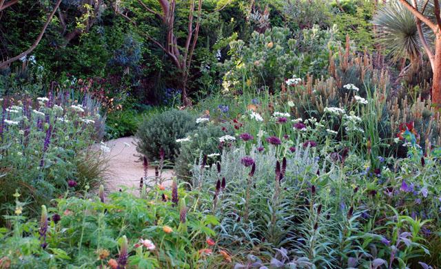 Beauty of Mathmatics Garden RHS Chelsea 2016 Lisa Cox