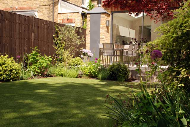 Chiswick Garden 6 months on from planting Lisa Cox Designs