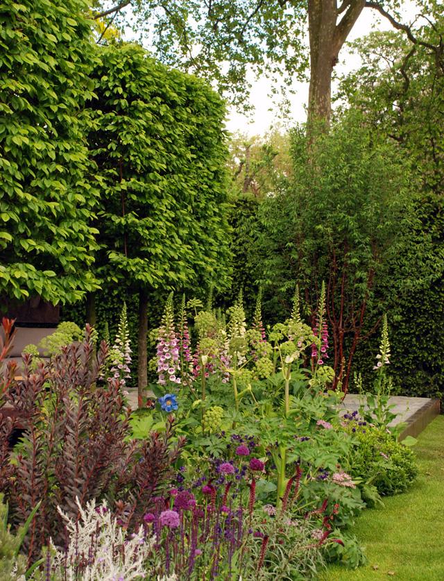 Hursqvana garden planting RHS Chelsea 2016 Lisa Cox