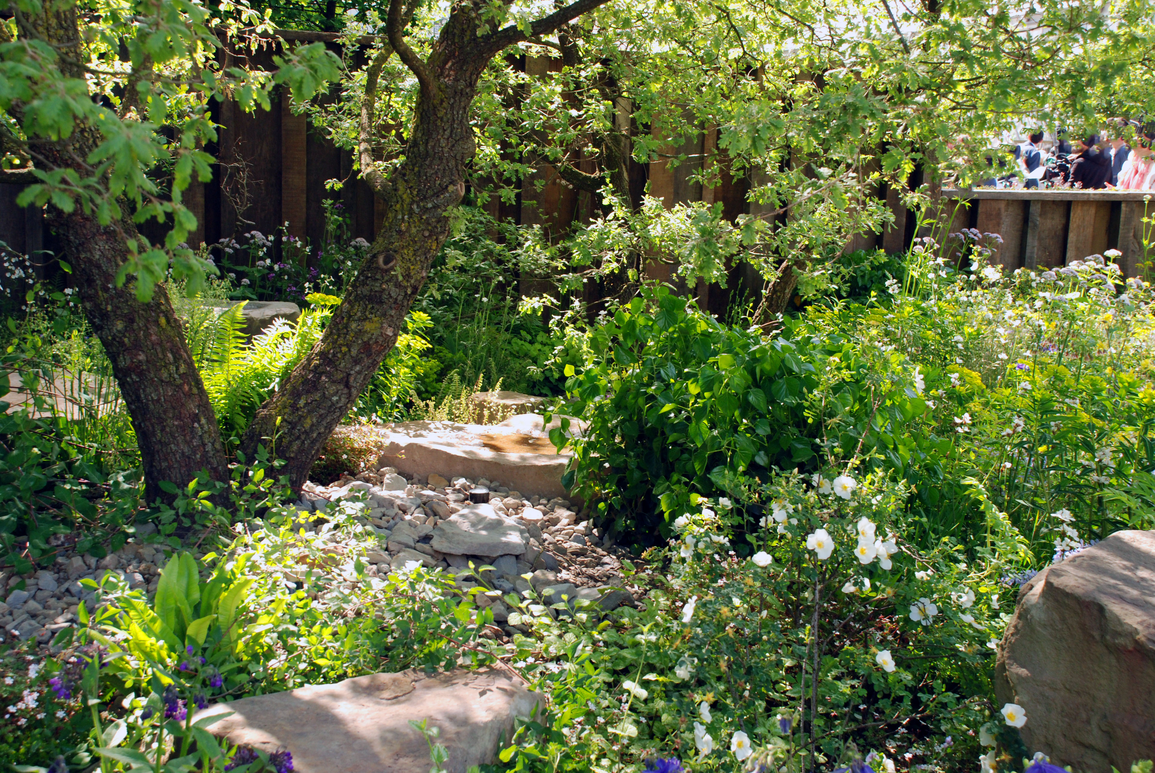 Cleve west lisa cox garden designs blog for Landscape my garden
