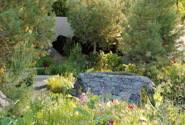 Royal Bank of Canada Garden RHS Chelsea 2016 Lisa Cox