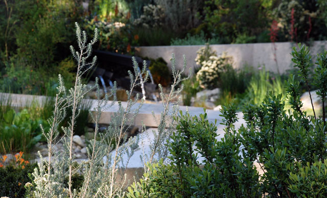 The Telegraph Garden planting RHS Chelsea 2016 Lisa Cox