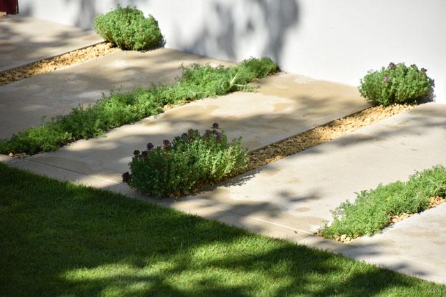 Paved pathway Squires Garden RHS Hampton 2016 Lisa Cox