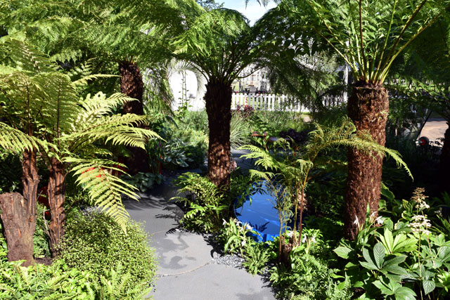 RHS Hampton 2016 Garden for Crohn's Disease Summer Lisa Cox