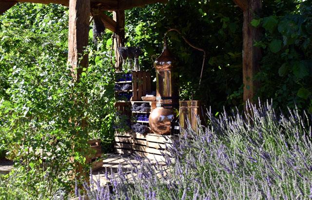 The Lavender Summer Garden RHS Hampton 2016 Lisa Cox