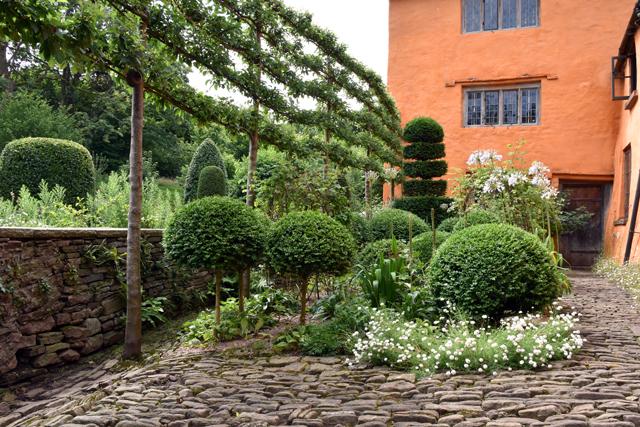 Allt-y-bela courtyard garden Lisa Cox