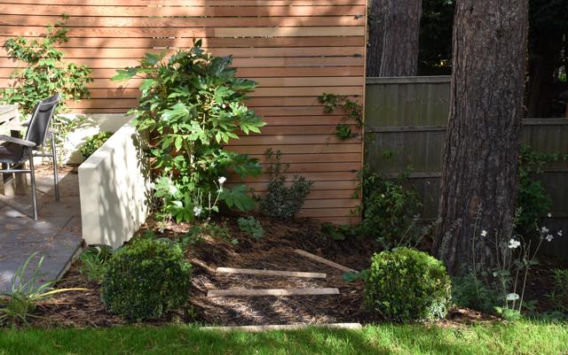 rubber-mulch-and-timber-steps-lisa-cox-garden-designs