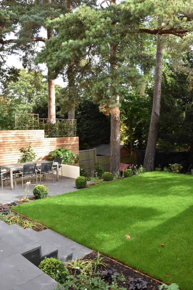 terrace-garden-with-scotts-pine-lisa-cox-designs