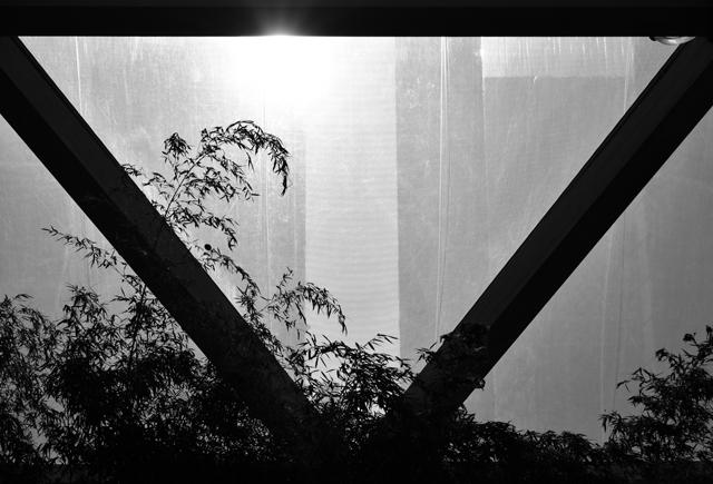 cross-rail-garden-canary-wharf-lisa-cox