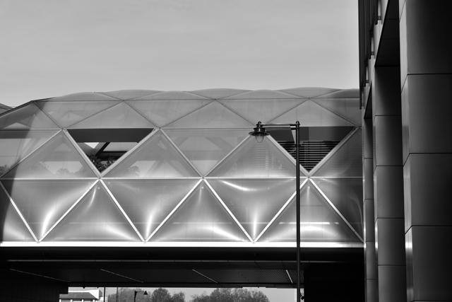 cross-rail-roof-garden-lisa-cox-garden-designs